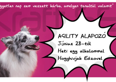 Agility flyer