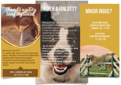Agility tanfolyam flyer